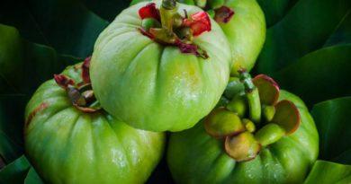 Garcinia-Cambogia-bio-achat