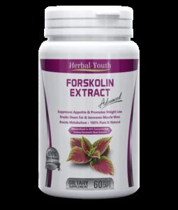 Le Forskolin : un brûleur de graisse efficace