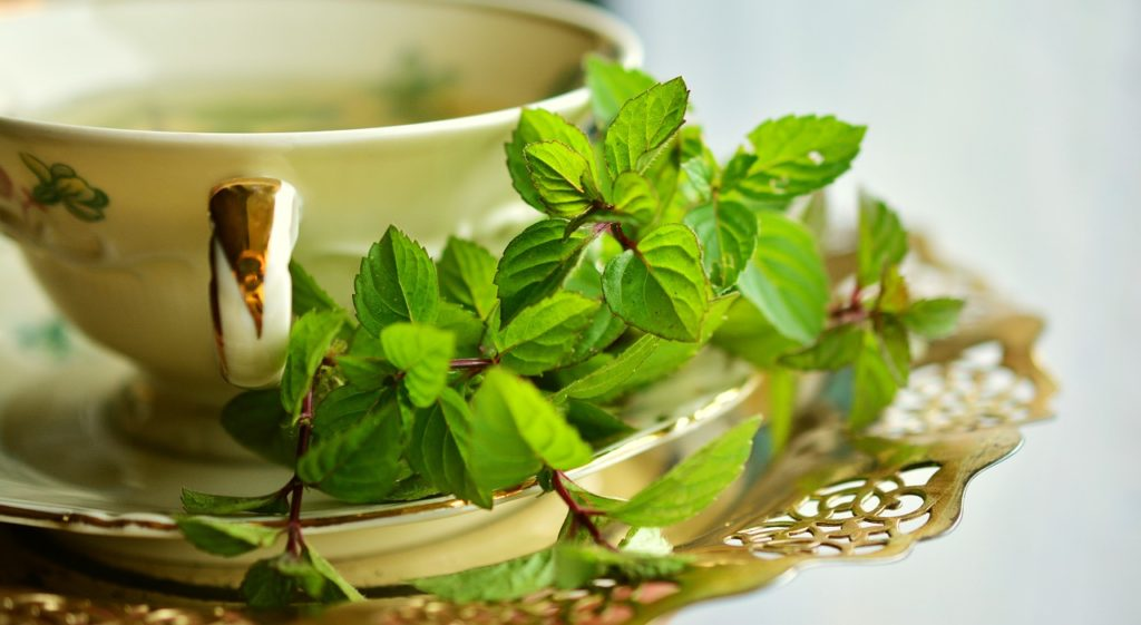 Les bienfaits de l'huile essentielle de menthe poivrée sont nombreux