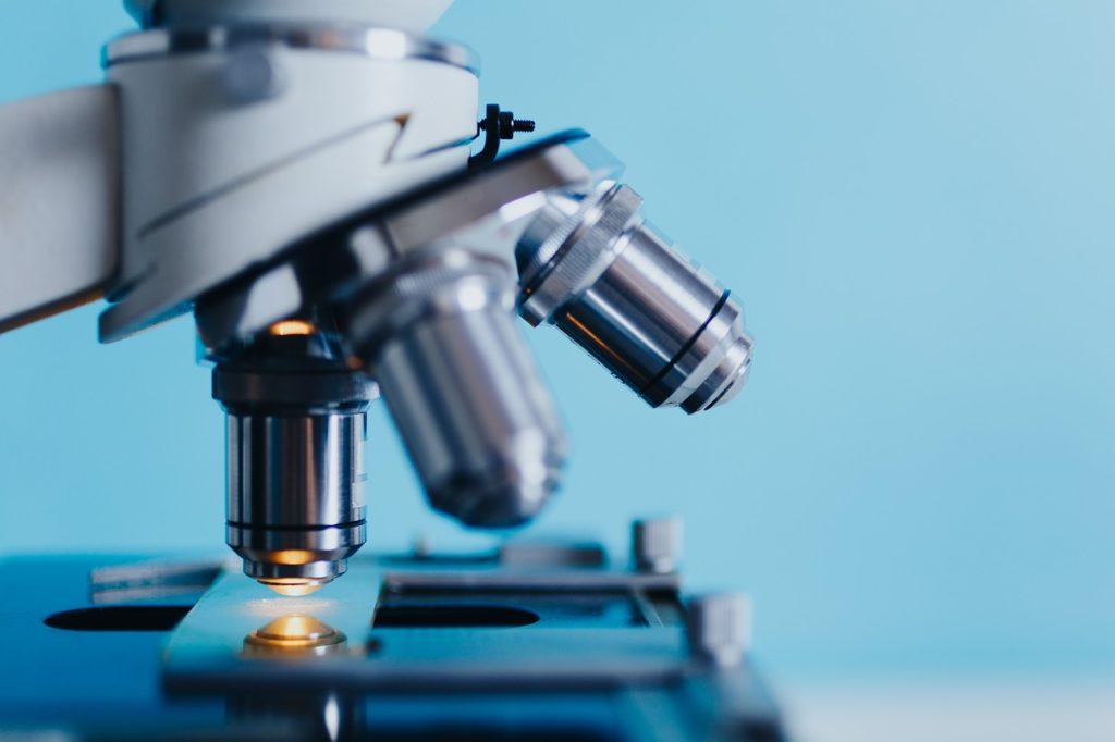 Preuves scientifiques et études cliniques sur l'efficacité de la gelée royale : ce qu'il faut savoir