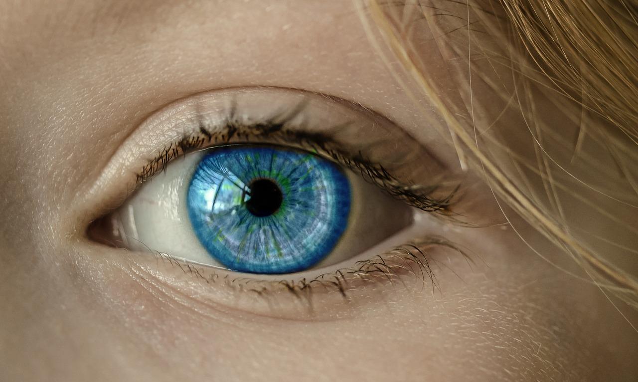 Orgelet à l'œil : que faire, et quel traitement pour se soigner ?